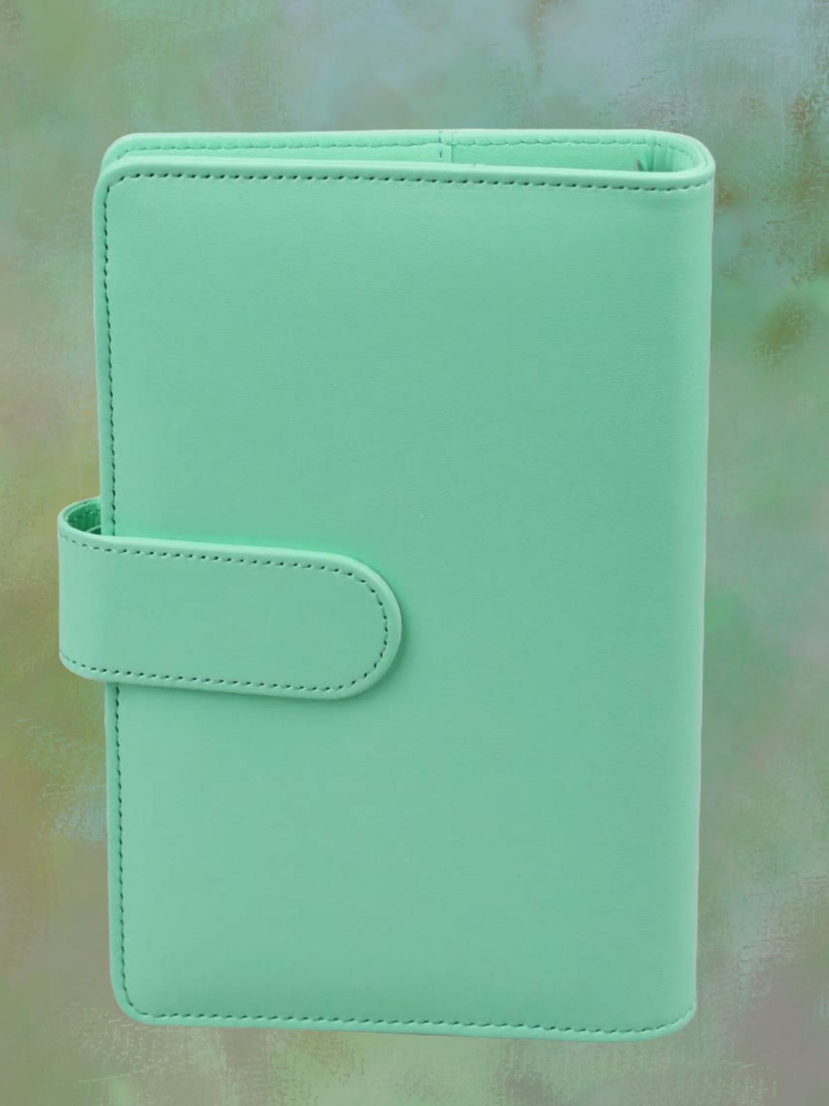 Leather envelope money manager, system, coupon organizer